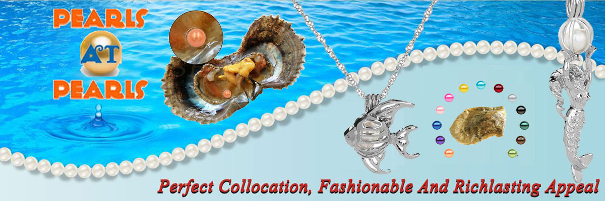 China Oyster Manufacturer
